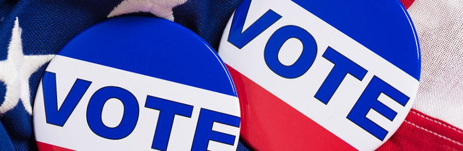 Go Vote Louisiana