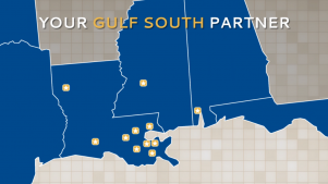 Your Gulf South Partner