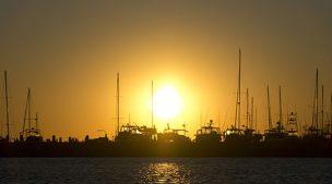 Gulf Coast Marina Alabama
